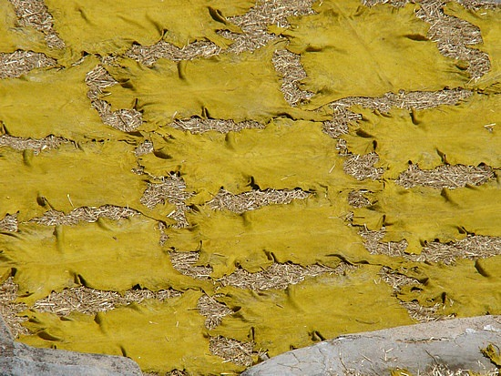 Yellow Leather drying in the sun