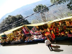 Colourful markets outside the zoo